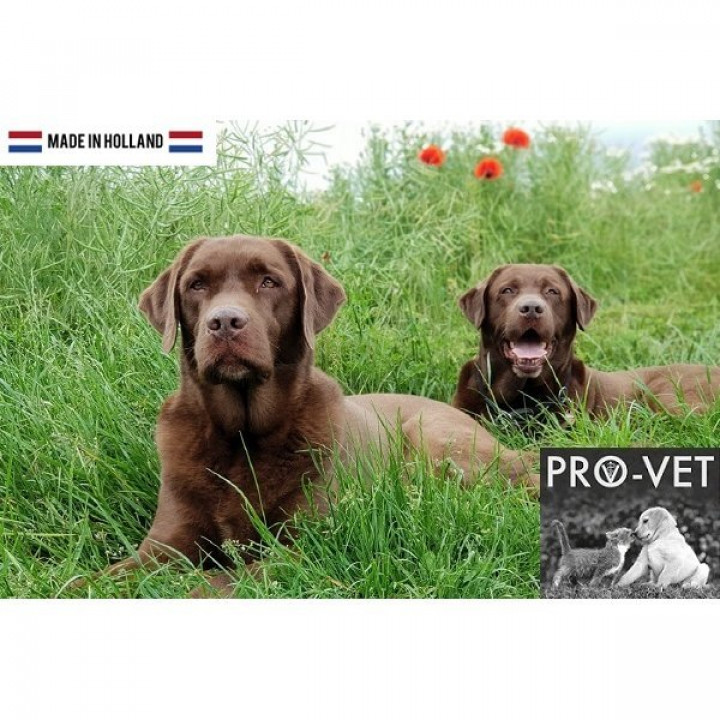 PRO-VET VETERINARY DOG RENAL/OXALATE 15KG