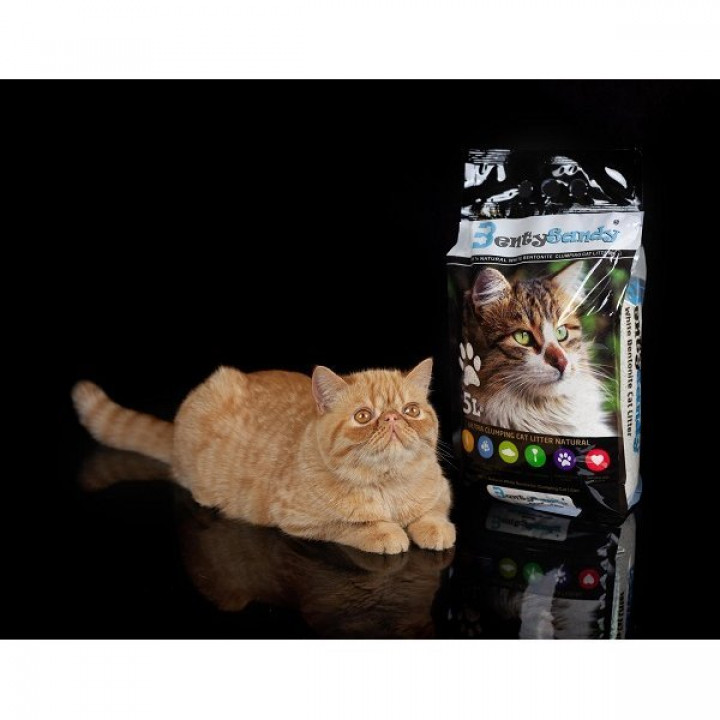 BENTY SANDY MARSEILLE SOAP CAT LITTER 5L